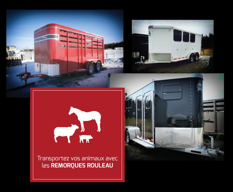 Transportez vos animaux avec les Remorques Rouleau